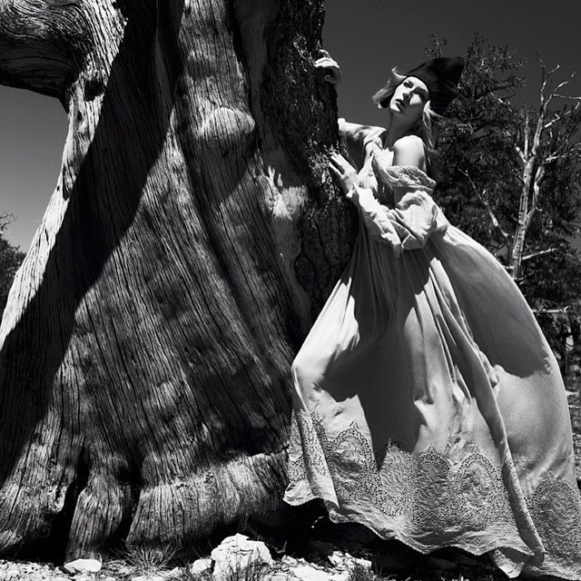 The amazing felicitygilbert for drama magazine on location bristlecone foresthellip