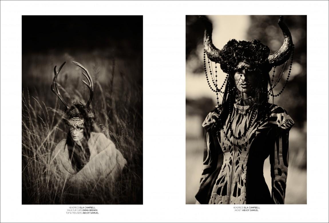 nocturnal animals jpegs8